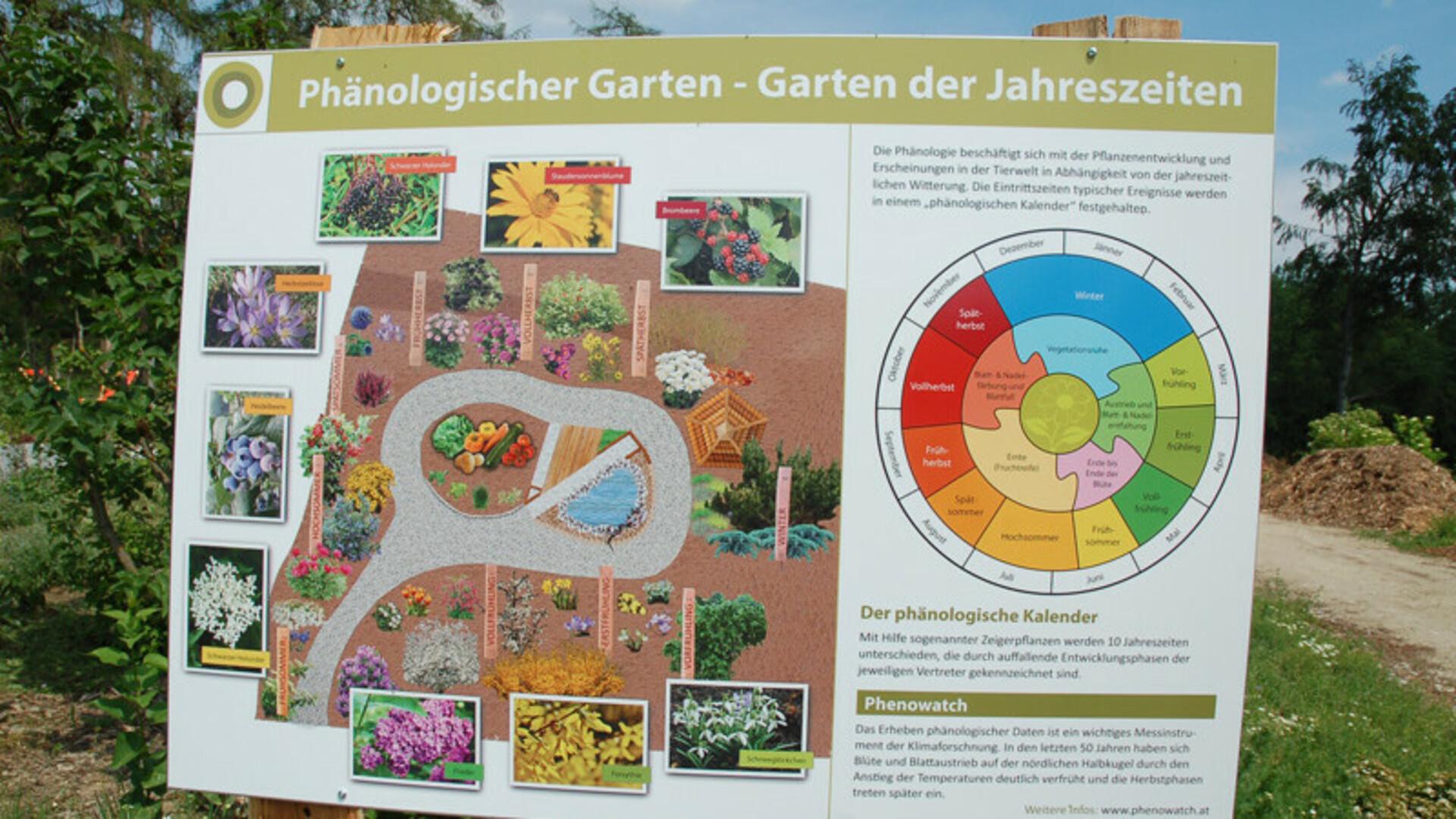 Phänologischer Garten beim Ökokreis Ottenstein